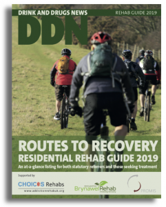 Cover of the DDN addiction Treatment Guide