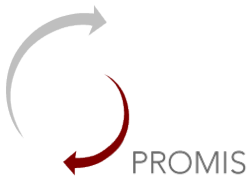 Promis drug and alcohol treatment