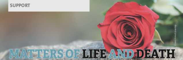 red rose illustrating grief